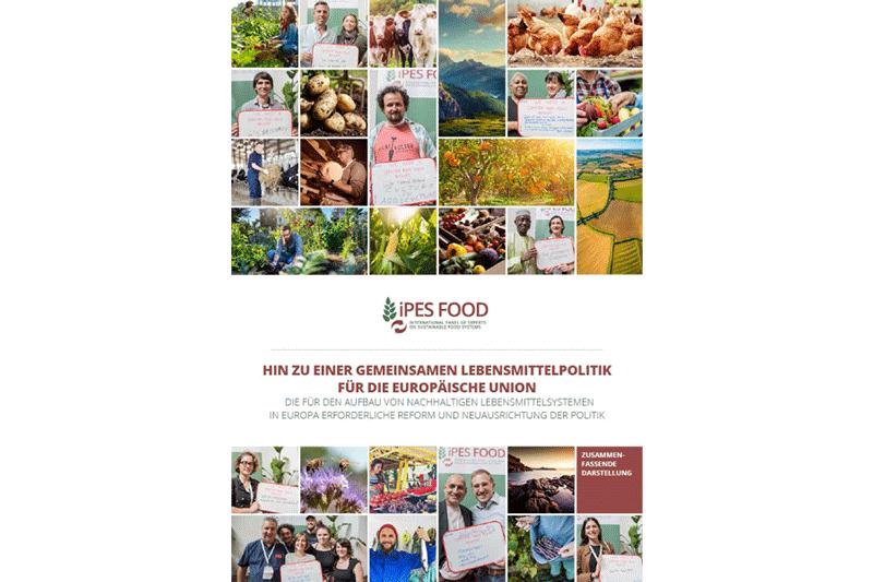 IPES-Report Titelseite